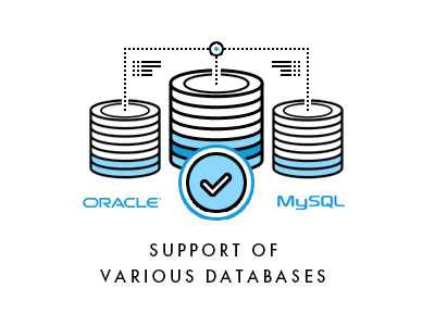 Support of various databases