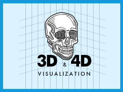 3D & 4D visualization